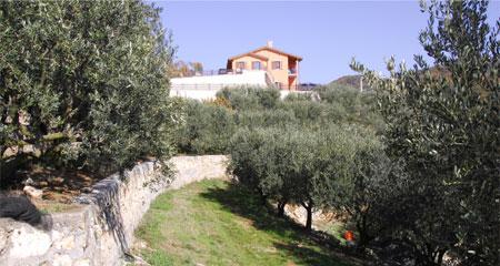 Azienda Agricola Pietro Zanoni